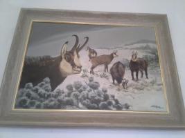 Foto 5 Verkaufe Hirschgeweih (Russland), Auerhahn, Fasan, Gams, Gemälde...