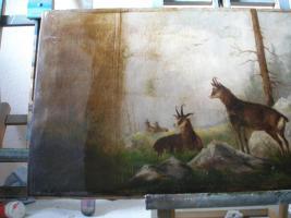 Foto 3 Verkaufe meine Restbestände eines Top- Gemäldereinigers