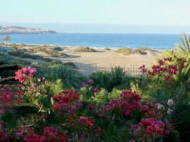 Foto 8 Vermietung Sun Club Gran Canaria - Playa del Ingles