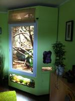 Foto 6 Vollautomatisiertes Terrarium zu verkaufen!!! GROß!!!!!!!!!!!!!!!!!!!!!!!