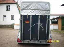 Foto 4 Vollpoly-Pferdeanhänger von BÖCKMANN