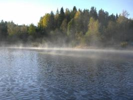 Foto 9 Von Privat - Ferienhaus - Schweden - Westküste - Dalsland - Ruhe, Entspannung u. Erholung pur !