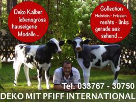 Foto 4 WAS SIE HABEN FÜR SO NE DEKO HOLSTEIN FRIESIAN KUH LEBENSGROSS 1150,00 € BEZAHL ...