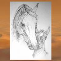 WESTERN-ART , Pferdeportrait und Tierportrait / Malerei auf LEDER und LEDERJACKEN