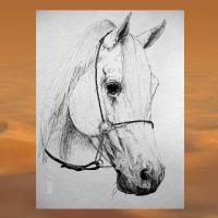 Foto 12 WESTERN-ART , Pferdeportrait und Tierportrait / Malerei auf LEDER und LEDERJACKEN
