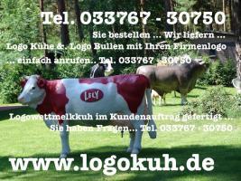 Foto 2 WILLSTE NE DEKO KUH FÜR DEINEN BAUERNHOFLADEN ALS BLICKFANG ...