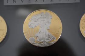 Foto 6 Wallstreet Inv. - 7 X 1 Unzen Mü. in Gold, Platin nur 640 EUR + Porto in Acryllglas verpackt
