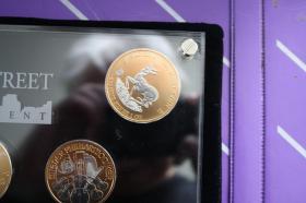 Foto 3 Wallstreet Investment 2010 - Silber / Gold / Platin - 7 Münzen je 1 Unze