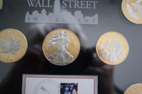Foto 5 Wallstreet Investment 2010 - Silber / Gold / Platin - 7 Münzen je 1 Unze