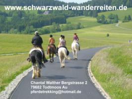 Foto 10 Wanderreiten 2 Tagestouren für Erwachsene Schweiz Deutschland Frankreich