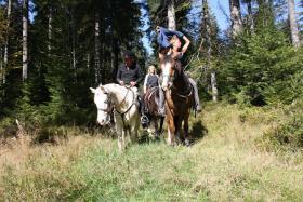 Foto 7 Wanderreiten für Erwachsene, Entschleunigen in Todtmoos Au, Pferdetrekking, Reitferien