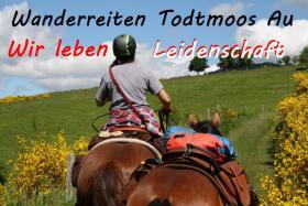 Wanderreiten für Erwachsene - Pferdetrekking Todtmoos Au