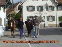 Foto 28 Wanderreiten für Erwachsene - Pferdetrekking - Reiturlaub im Schwarzwald