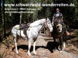 Foto 7 Wanderreiten Todtmoos Au - Reiten für Outdoor-Fans