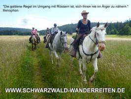 Foto 21 Wanderreiten für abenteuerlustige Reiterinnen und Reiter