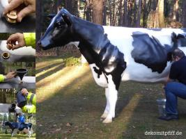 Foto 3 Warun nicht mal ne Deko Melk Kuh …?