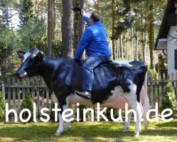 Was denn Du hast noch keine Holstein Deko Kuh in deinen Garten …. www.holsteinkuh.de