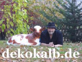 Foto 5 Was denn Du hast noch keine Holstein Deko Kuh in deinen Garten …. www.holsteinkuh.de