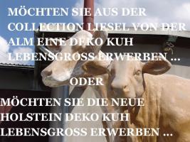 Was DU hast NOCH KEINE HolsteinKuh im Garten ...