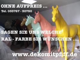 Foto 4 Was DU hast NOCH KEINE HolsteinKuh im Garten ...