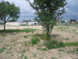 Foto 2 We are offering for sale a 7,541 m2 plot