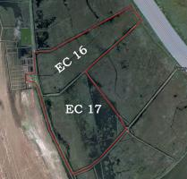 We sell investment company with 736 ha in the Danube Delta, Romania