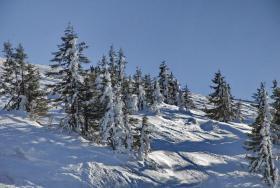 Foto 2 Weihnachten in Tirol - Kitzbühe