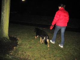 Weihnachtsbesucht  zb. im Kinderheim srs, ,K9 Squad Dog Team NRW Taiga