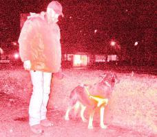 Foto 4 Weihnachtsbesucht  zb. im Kinderheim srs, ,K9 Squad Dog Team NRW Taiga