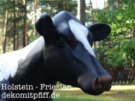 Foto 2 Weihnachtskrippe oder Holstein Deko Kuh  …?