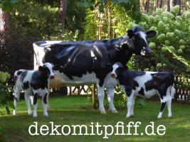 Foto 4 Weihnachtskrippe oder Holstein Deko Kuh  …?