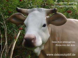 Foto 2 Weihnachtskrippe als Weihnachtsdekoration für Deinen Garten… www.dekomitpfiff.de