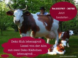 Foto 3 Wie so holst Du net Dir ne Deko Kuh mit Deko Kalb oder ...