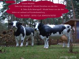 Foto 5 Wie so holst Du net Dir ne Deko Kuh mit Deko Kalb oder ...