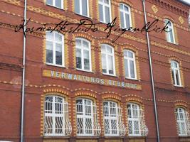 Foto 10 Wimpernverlängerung - 3-D-Wimpern, Einzelwimpern, Eye Lashes, Augsburg