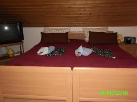 Foto 18 Winterangebot-im Haus alleine wohnen 2 bis 6 Personen