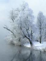 Winterfester PARKPLATZ in 1220 Wien zu vermieten