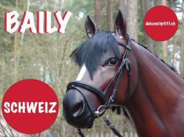 Foto 2 Winterthur -  Deko Kuh lebensgross oder Deko Pferd lebensgross ...