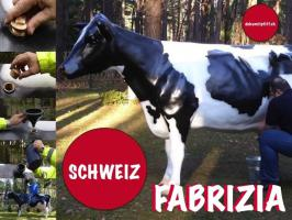 Foto 4 Winterthur -  Deko Kuh lebensgross oder Deko Pferd lebensgross ...