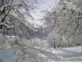 Foto 11 Winterurlaub im Berchtesgadener Land, Ferienwohnungen in Schönau am Königssee, W-LAN
