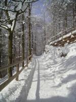 Foto 12 Winterurlaub im Berchtesgadener Land, Ferienwohnungen in Schönau am Königssee, W-LAN