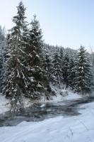 Foto 4 Winterurlaub in Polen