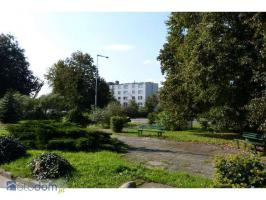Wohnung-3 Zimmer in Polen vermiete