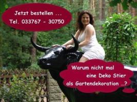 Foto 3 Worauf willst Du warten einfach bestellen das Deko Pferd lebensgross ...