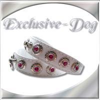 XS Strasshalsbänder Lederhalsbänder mini Chihuahua Halsband Prager Rattler
