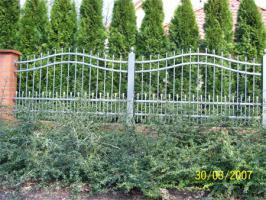 Foto 6 Zaun aus Polen, Zäune, Tore, Pforten, Geländer aus Metall