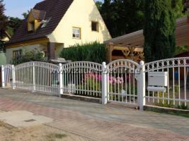 Foto 9 Zaun aus Polen, schmiedeeiserne Zäune aus Polen - günstig