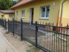 Foto 9 Zaun und Tor Muster Nr 29 - alle Farben nach Ral-Code möglich - aus Polen von BLASK