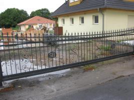 Foto 8 Zaunanlage, Tore, Pforte, Kunstschmiede aus Polen -15% Winterrabatt
