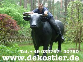 Foto 2 Zeigen Ihren Nachbarn mal die Hörner Ihres neuen Deko Stiers ...